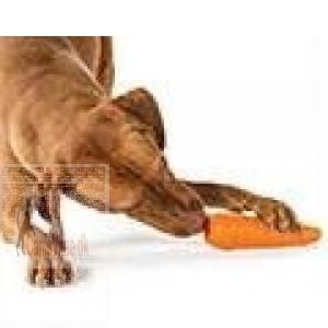 Planet Dog Orbee-Tuff gulerod-31