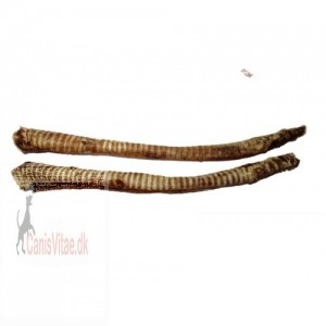 Okse luftrør, 2 stk a´ca. 30 cm-31