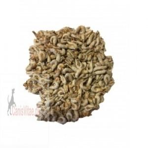 Nordsøkrebs, 100 gram-31