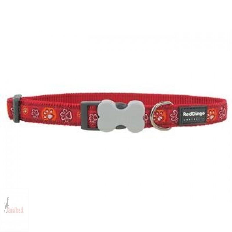 Red Dingo halsbånd, rødt m. poter - fra