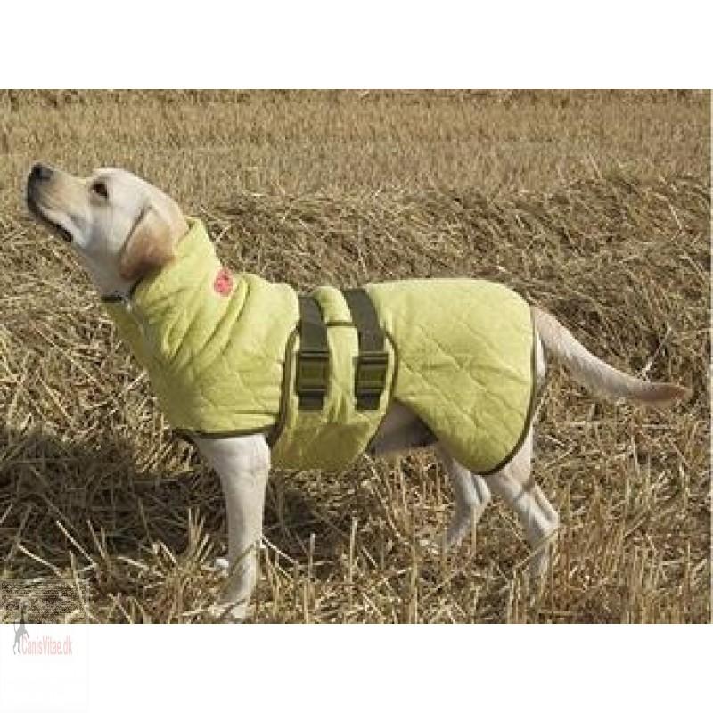 Siccaro wetdog, classic grøn (bamboo) - fra