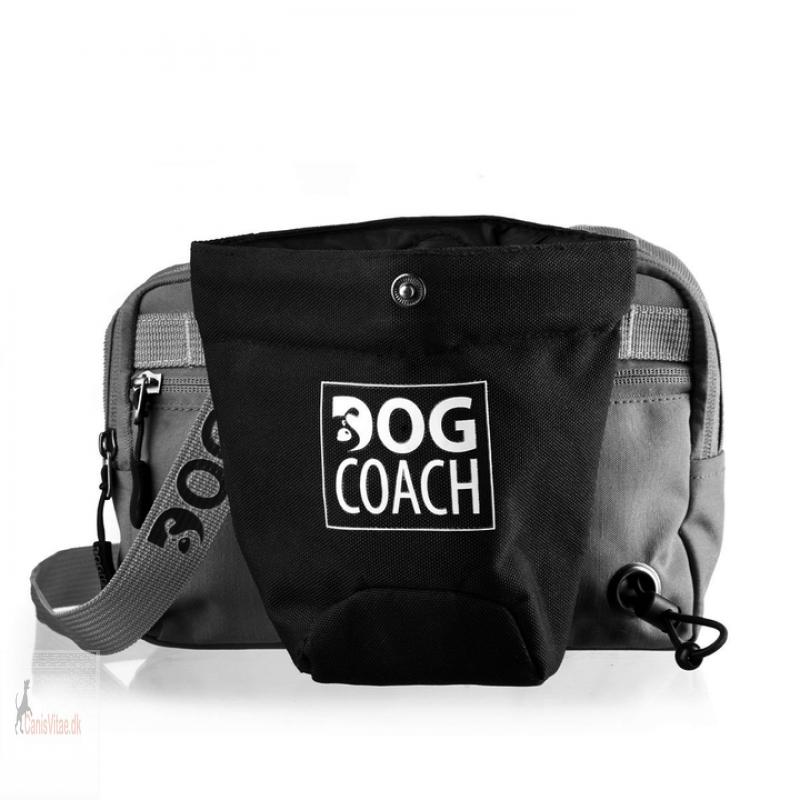 DogCoachbltetaskeantracitgr-01