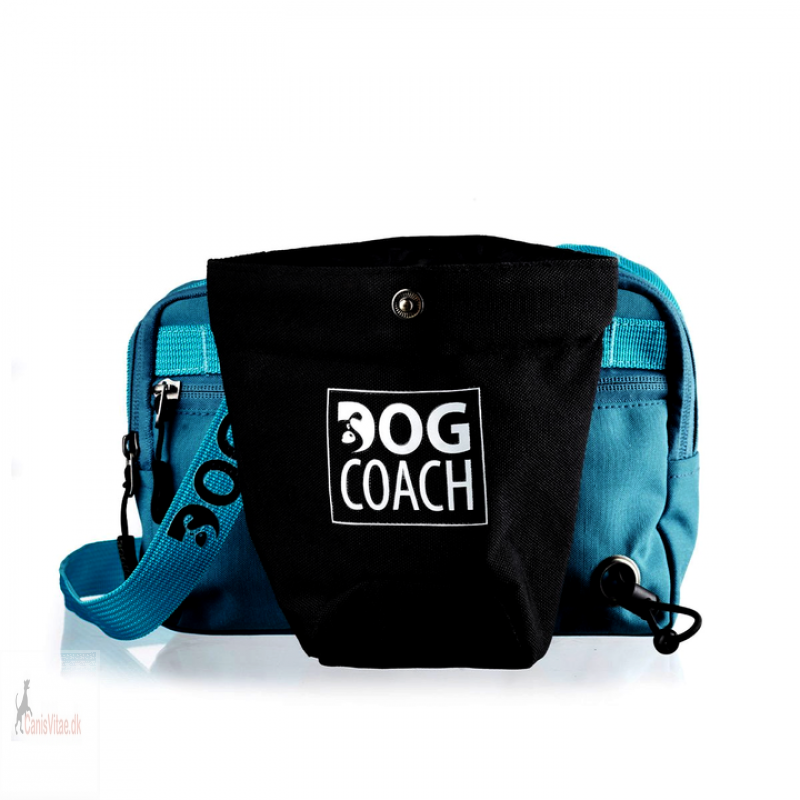 DogCoachbltetaskePetroleumsbl-03