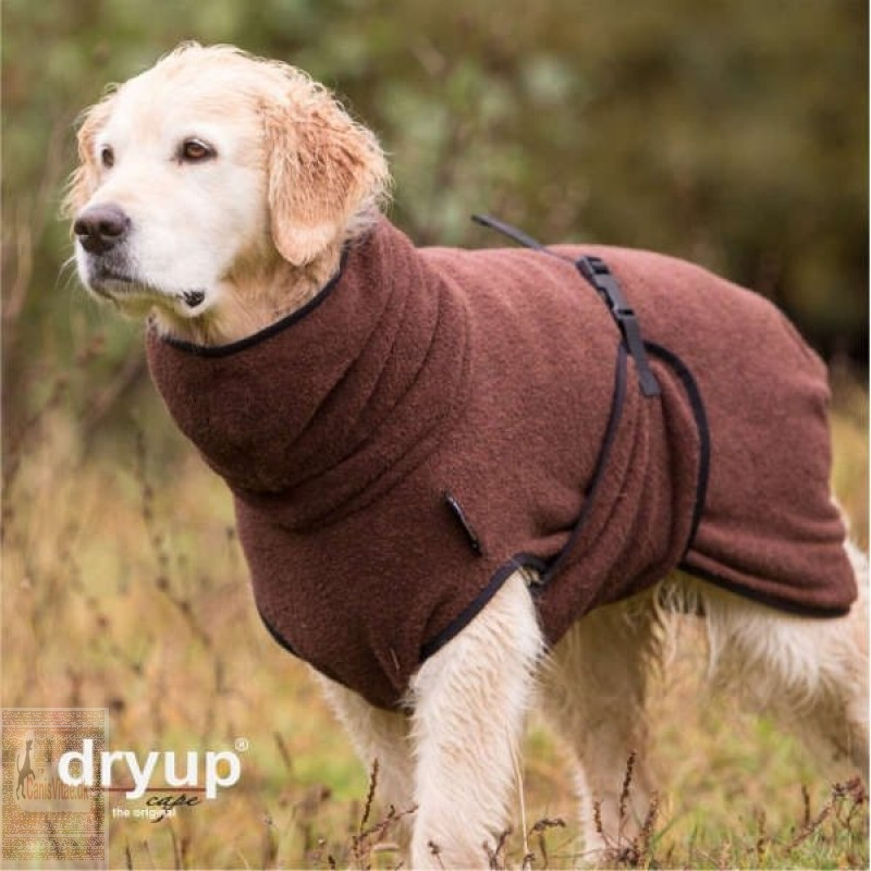 Dryup cape, brown