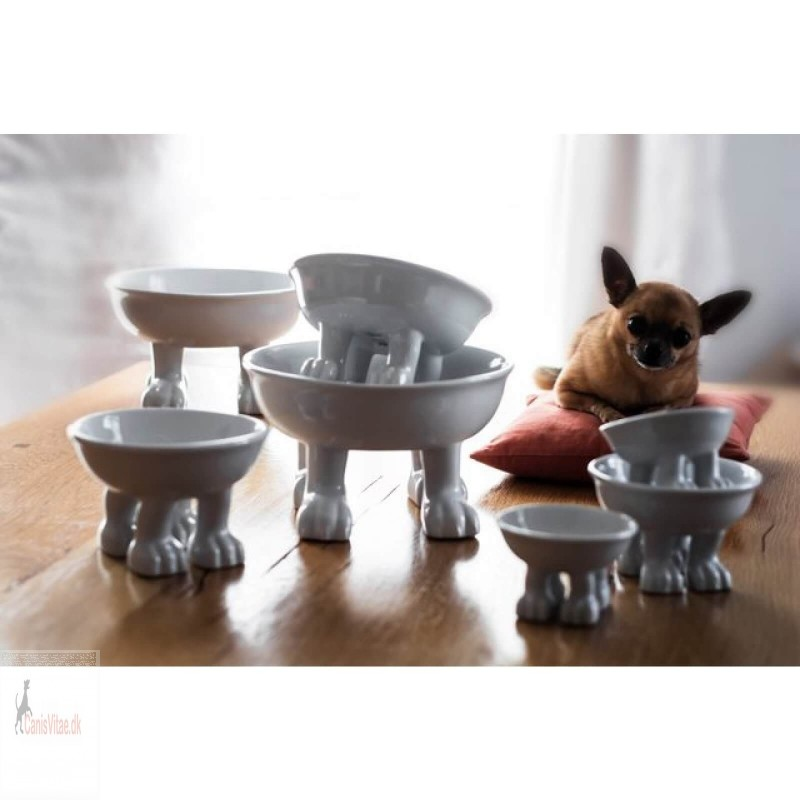 Dylan Kendall Pet and Lifestyle Bowl FRA-01