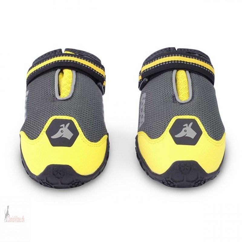 EQDOG 4season sko