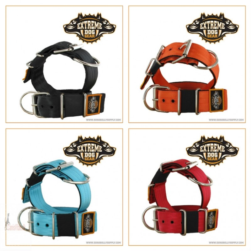 Extreme Dog Gear Halsbånd, 5 cm bredt Turkis-05