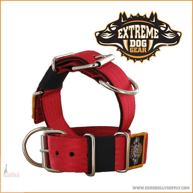 ExtremeDogGearHalsbnd5cmbredtTurkis-05