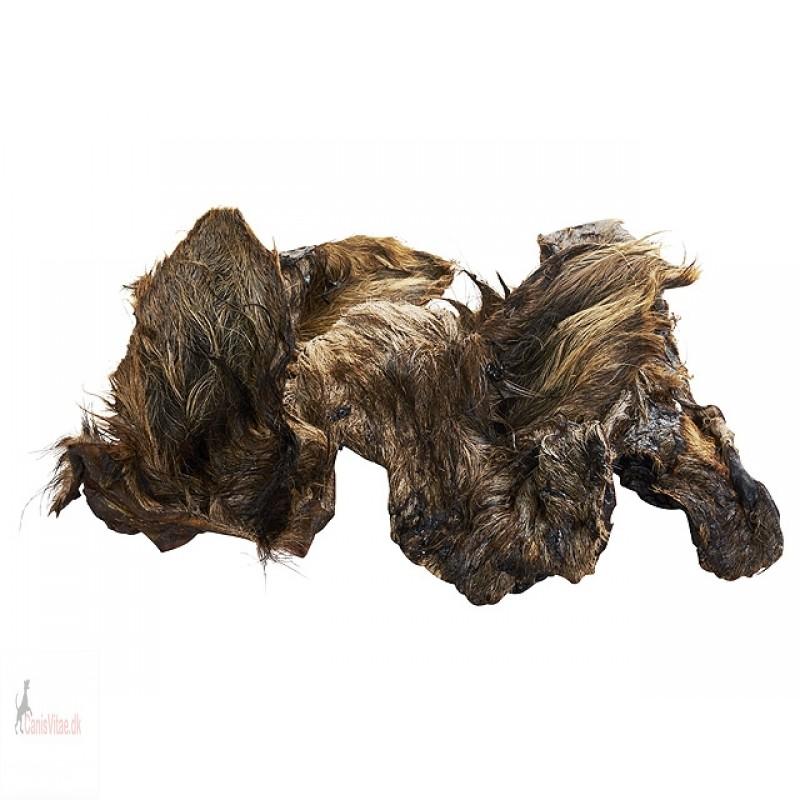 Kamelører med pels, 5 stk