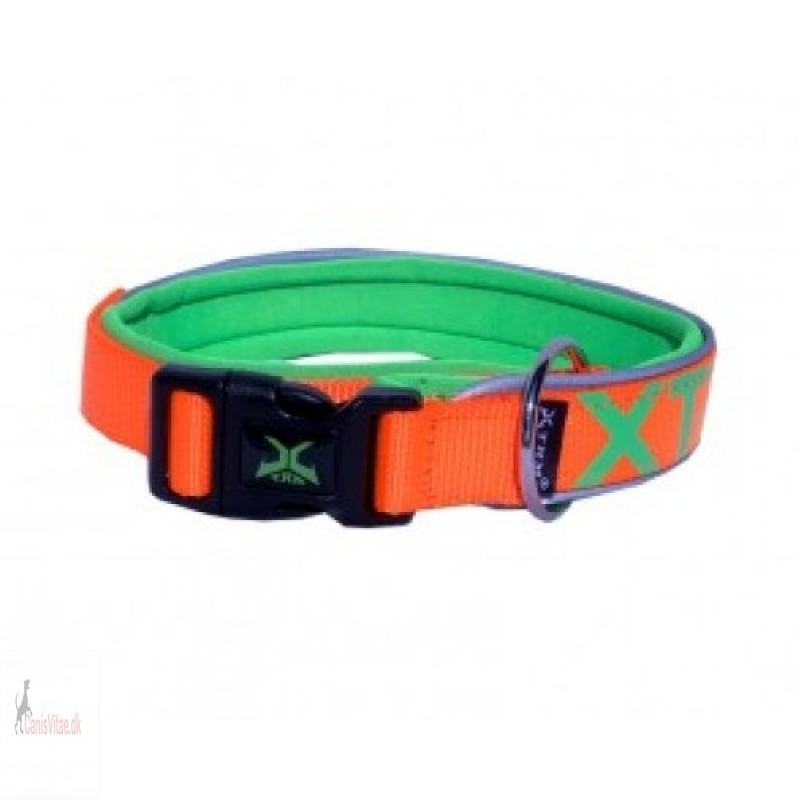 XTRM halsbånd - Orange - fra