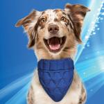 Aqua Coolkeeper Pet bandana. blå fra-20