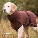 Dryupcapebrown-20