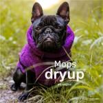 DryupcapeFranskbuldogolvlgfarve-20