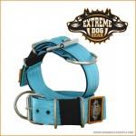 ExtremeDogGearHalsbnd5cmbredtTurkis-20