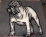 Vet Bed, Bulldog, 75 x100cm-20
