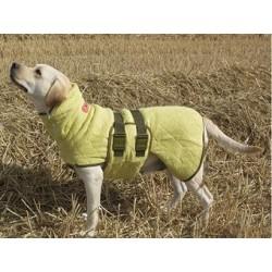 Siccaro wetdog, classic grøn (bamboo) fra-20