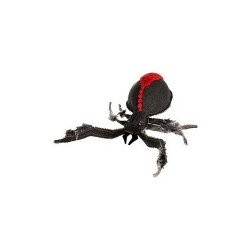 Petsport USA , Red Back Spider-25cm-20