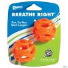 Chuck It Breath Right Fetch Ball-01