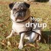 Dryup cape Fransk buldog o.l, vælg farve