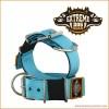 Extreme Dog Gear Halsbånd, 5 cm bredt - Turkis