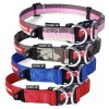Ezydog double up collar - XLarge